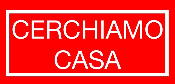 CERCHIAMO CASA